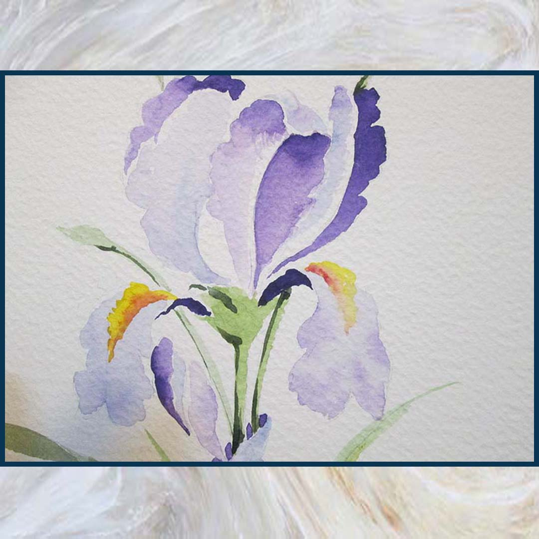 آبرنگ گل زنبق